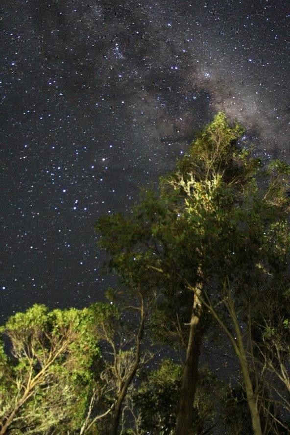 Cradle Mountain night sky.-10603388_10154464216330537_5845619853665310076_n.jpg