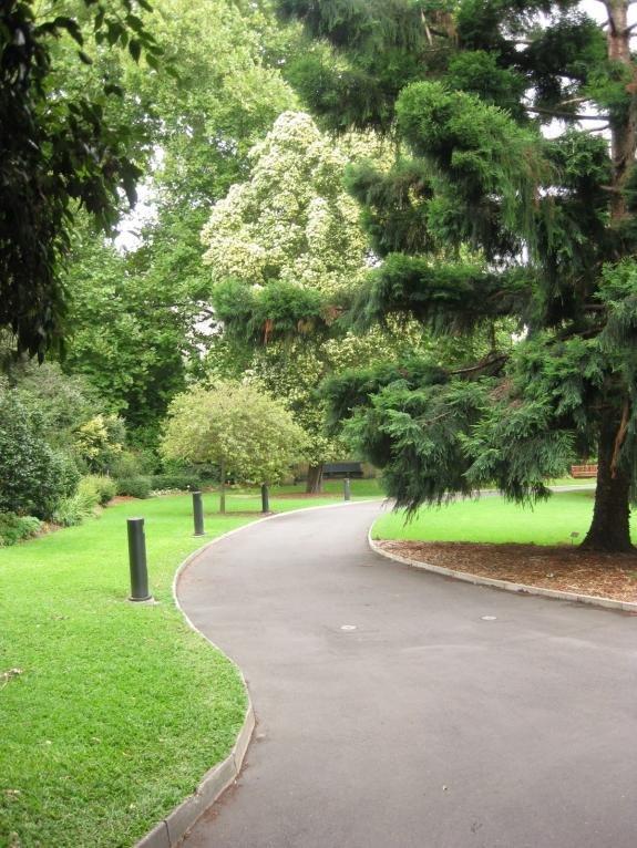 Sydney Botanic Gardens-img_3035.jpg